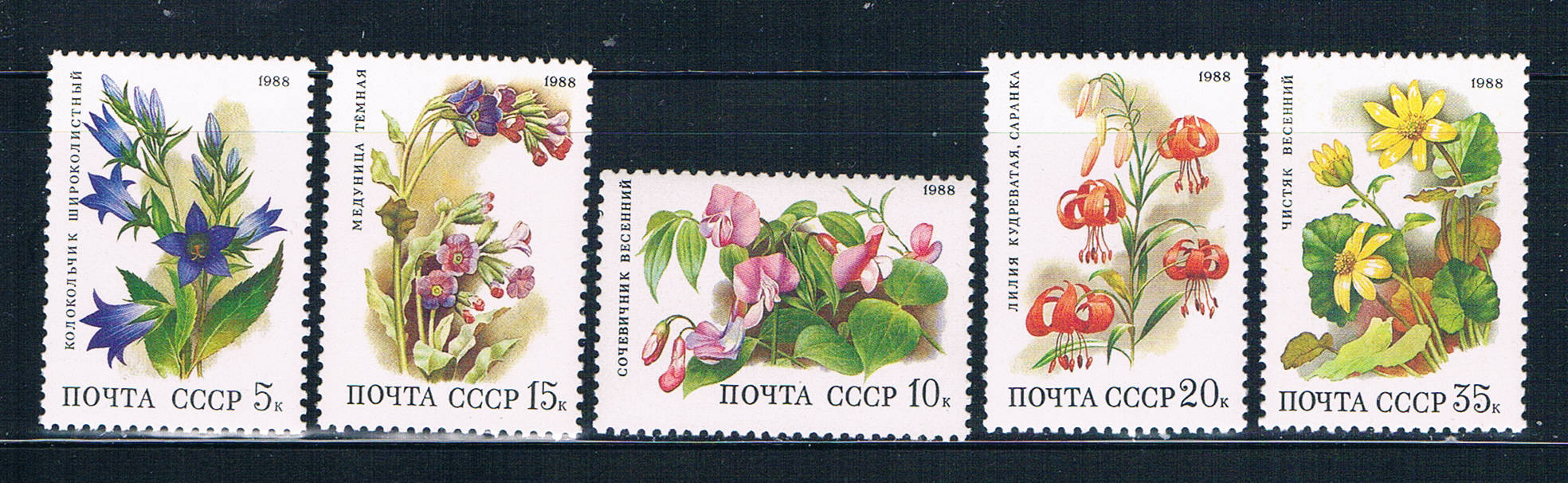 Russia 5687-91 MNH set Flowers 1988 (R0476)+