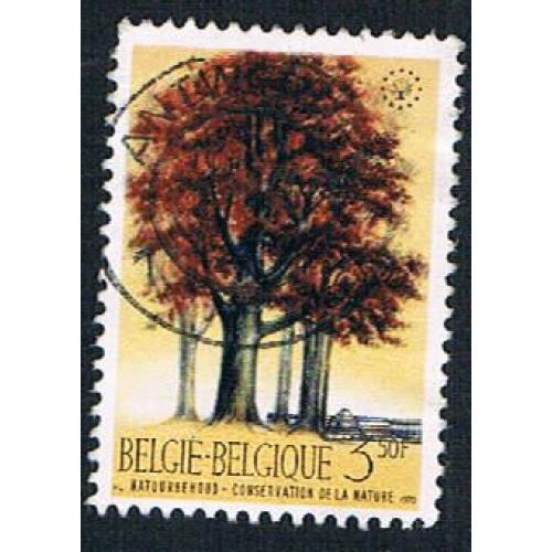 Belgium 737 Used Beeches (BP16422)