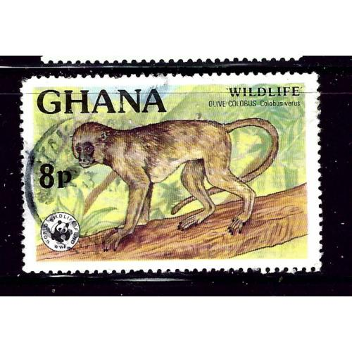 Ghana 621 Used 1977 issue     (P76)