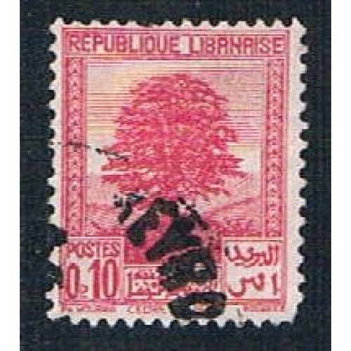 Lebanon 137 Used Cedar of Lebanon (BP241)