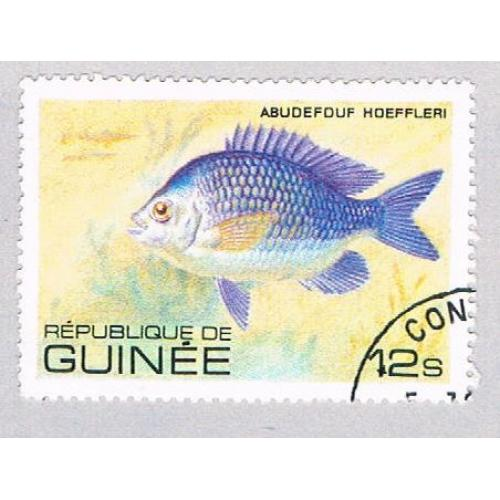 Guinea 805 Used Fish Abudefuf 1980 (BP48502)